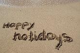 nice holiday happy holidays