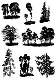 various vector trees