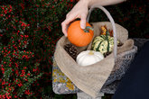 Woman places a sugar pumpkin into basket of autumn gourds