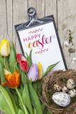 Fresh colorful tulips in front of a wooden background with Easter bunnies