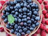 freshly raspberry blueberry fruit antioxidant food