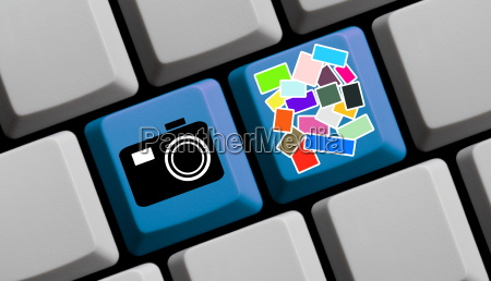 Search Photos Online