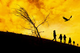 people walking and bird flying