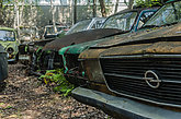 old cars in a place